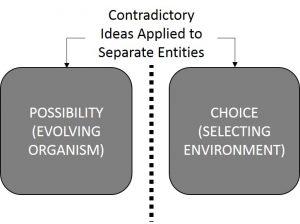 evolution-contradiction