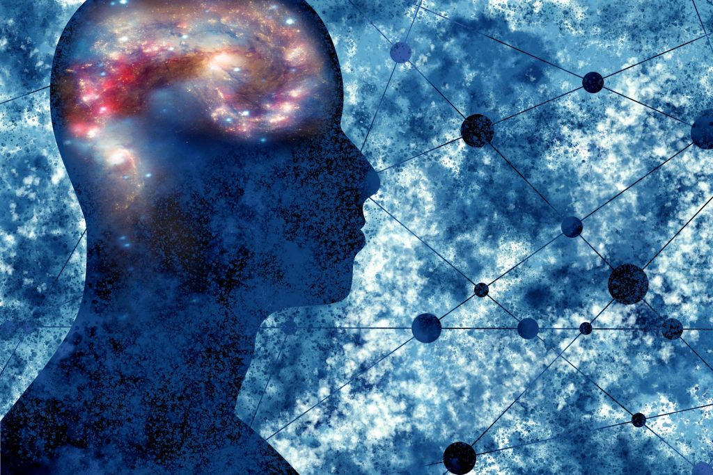 The Scientific Study of Consciousness